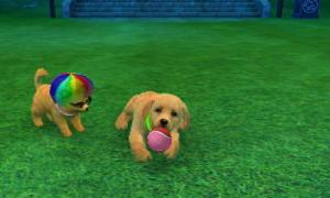 dogs215.jpg