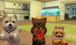 dogs291.jpg