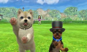 dogs303.jpg