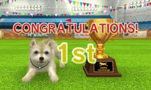 dogs320.jpg