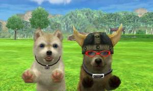 dogs344.jpg