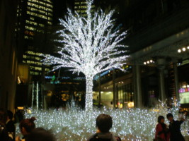 2008christmas11.jpg