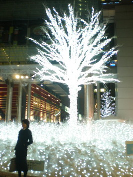 2008christmas12.jpg