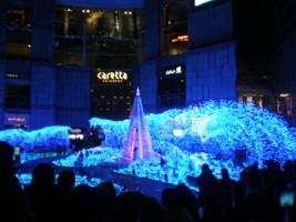 2008christmas2.jpg