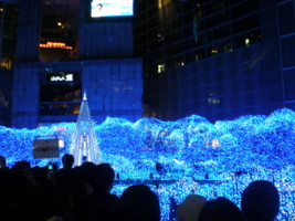 2008christmas3.jpg
