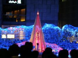 2008christmas4.jpg