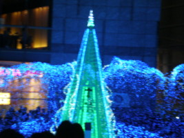 2008christmas6.jpg