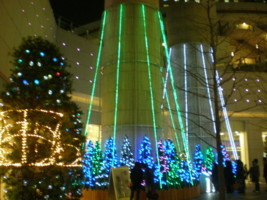2008christmas9.jpg