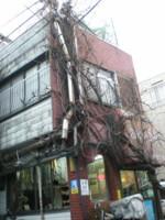 asagaya-street62.jpg