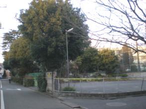 asagaya-street64.jpg