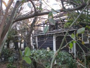 asagaya-street68.jpg