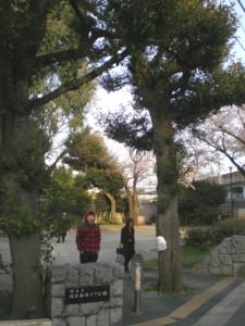 asagaya-street82.jpg