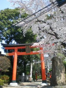 asagaya-street89.jpg