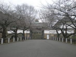 chiyodaku17.jpg