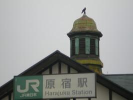 harajuku-street1.jpg