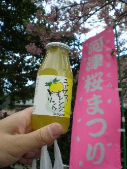 kawazu18.jpg