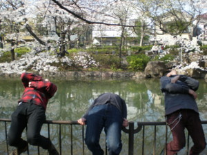 koenji-mabashi-park13.jpg