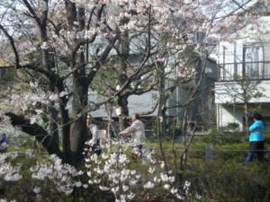 koenji-mabashi-park14.jpg