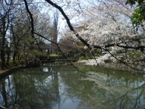 koenji-mabashi-park3.jpg
