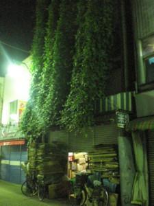 koenji-street19.jpg