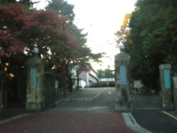 mitaka-nao3.jpg