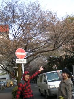 mitaka-street17.jpg
