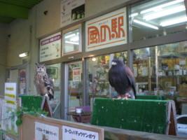 mitaka-street20.jpg