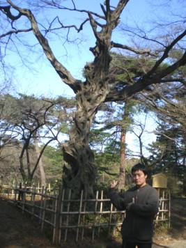 saitama-street17.jpg