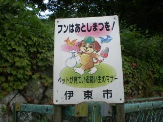 sizuoka-ito1.jpg