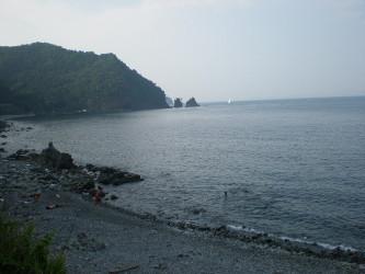 sizuoka-ito10.jpg