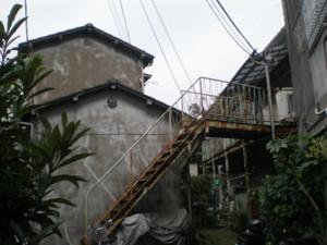 sumidaku-tamanoi12.jpg
