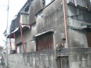 sumidaku-tamanoi14.jpg