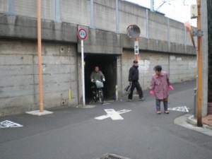 sumidaku-tamanoi21.jpg