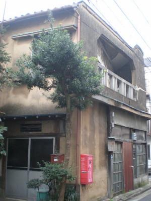 sumidaku-tamanoi3.jpg