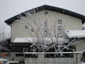 tokamachi-Kojimaya16.jpg