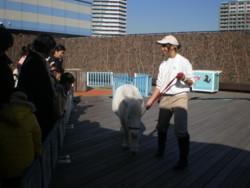 toshimaku-ikebukuro20.jpg