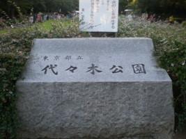 yoyogi-yoyogipark1.jpg