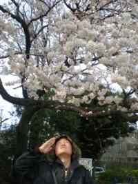 zenpukuji-park10.jpg