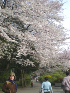 zenpukuji-park13.jpg