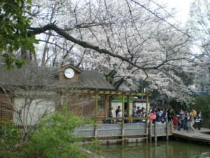 zenpukuji-park15.jpg