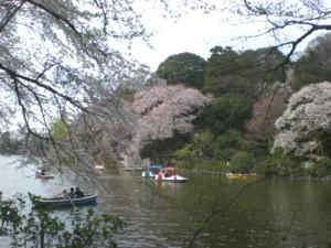 zenpukuji-park3.jpg