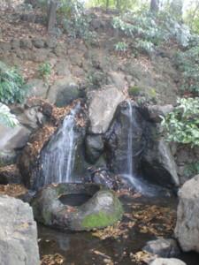 zenpukuji-park6.jpg