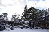 2011,12雪景色 030