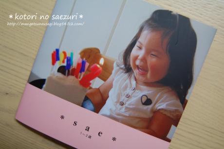 DSC_0019のコピー