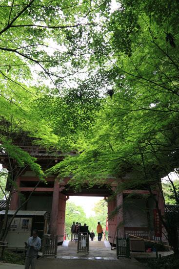 醍醐寺-4