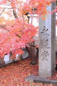 kyoto-1-s.jpg
