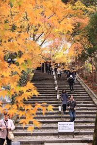 kyoto-19-s.jpg