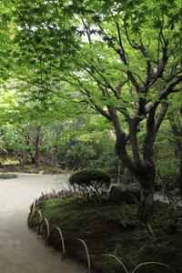 kyoto-201105-11tate.jpg