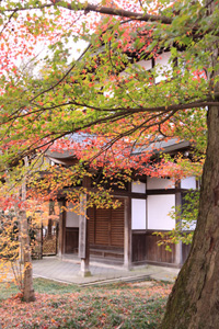kyoto-25-s.jpg