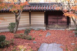kyoto-3-s.jpg